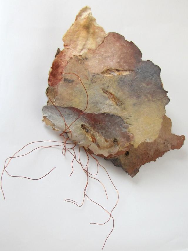Dory's Tremblay - Fossiles