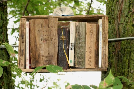 Raynald Légaré - Les livres retournent dans la forêt.