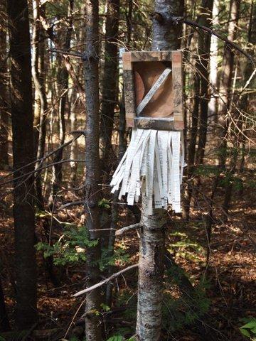Jocelyne Aird-Béalanger - J'étais un arbre
