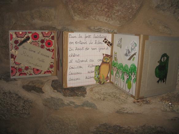 Minia Mallo Planchais - Mon livre d'oiseaux - 50 €
